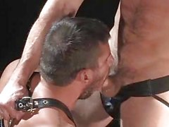 Hairy Duo Logan Scott And Rusty Stevens