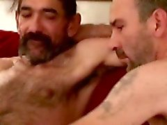 Straight horny mature bears oral fun