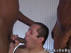 Chubby latino guy gets assfucked by black men