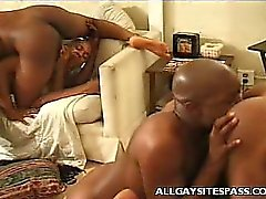 Slutty Gay Sucks Cock